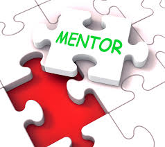 Mentors Fill in the Missing Puzzle